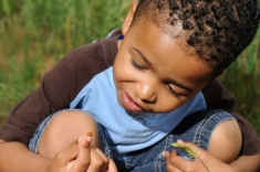 child-playing-with-ladybug_shutterstock_34240837