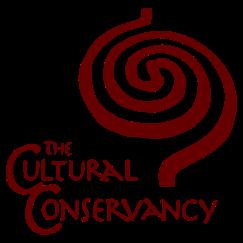 TCC+logo+red+vert